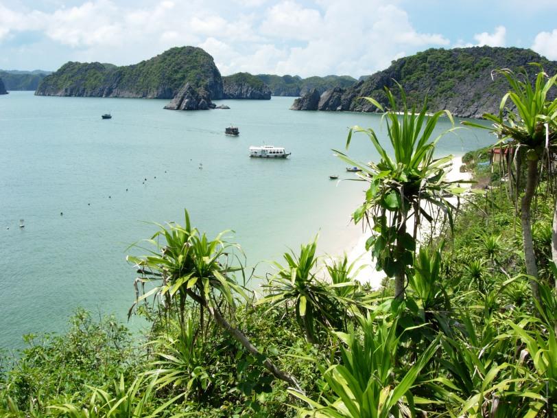 Đảo Khỉ - Monkey Island